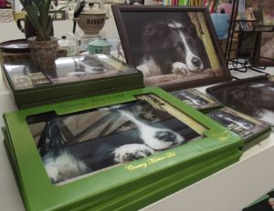 collie dog trays and placemats