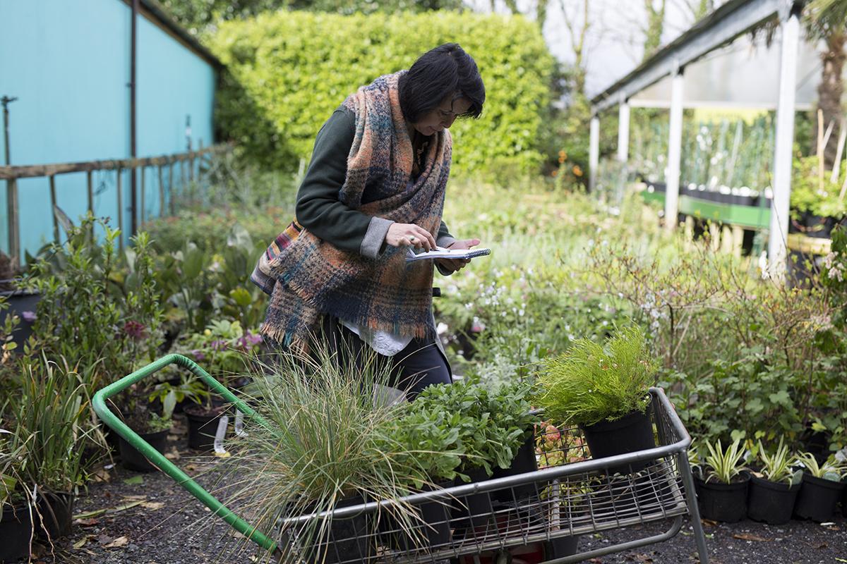 Lady with Trevena Cross plants in trolley
