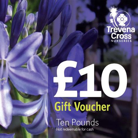 10 pound Trevena Cross Gift Voucher