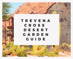Trevena Cross Desert Garden Guide
