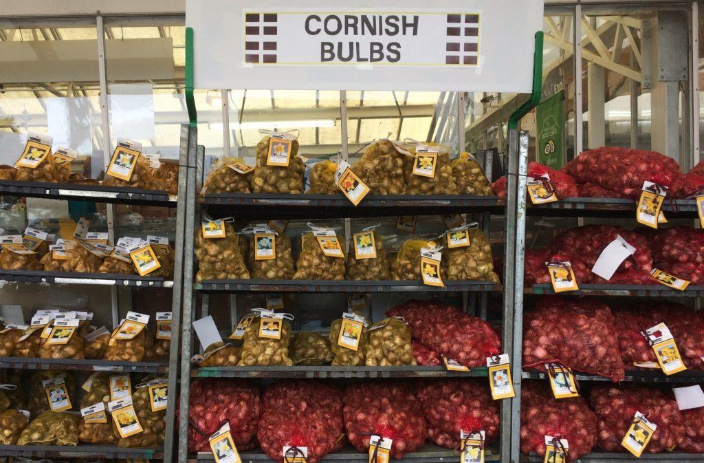 Cornish bulbs on trolleys