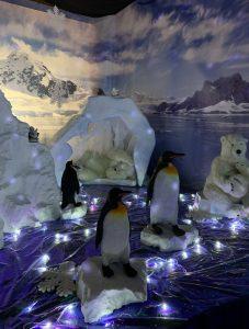 Penguins and polar bears in Trevena Cross grotto 2018
