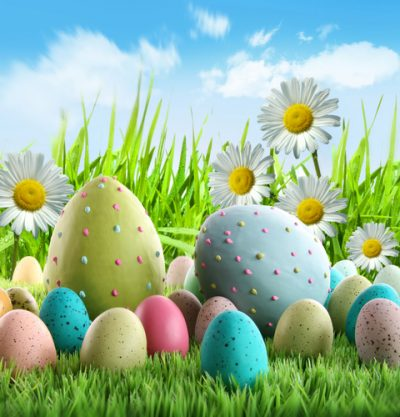 Colourful Easter eggs on grass