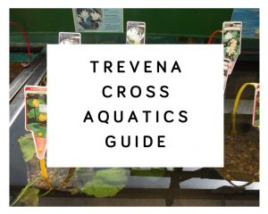 Trevena Cross Aquatics Guide