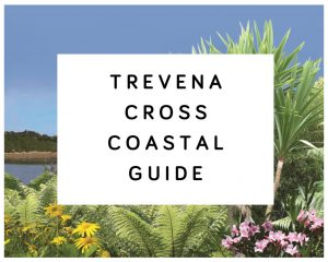 Trevena Cross Coastal Guide