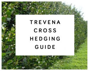 Trevena Cross Hedging Guide