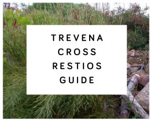 Trevena Cross Restios Guide