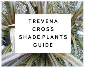 Trevena Cross Shade Plants Guide