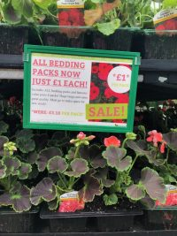All bedding and patio now £1