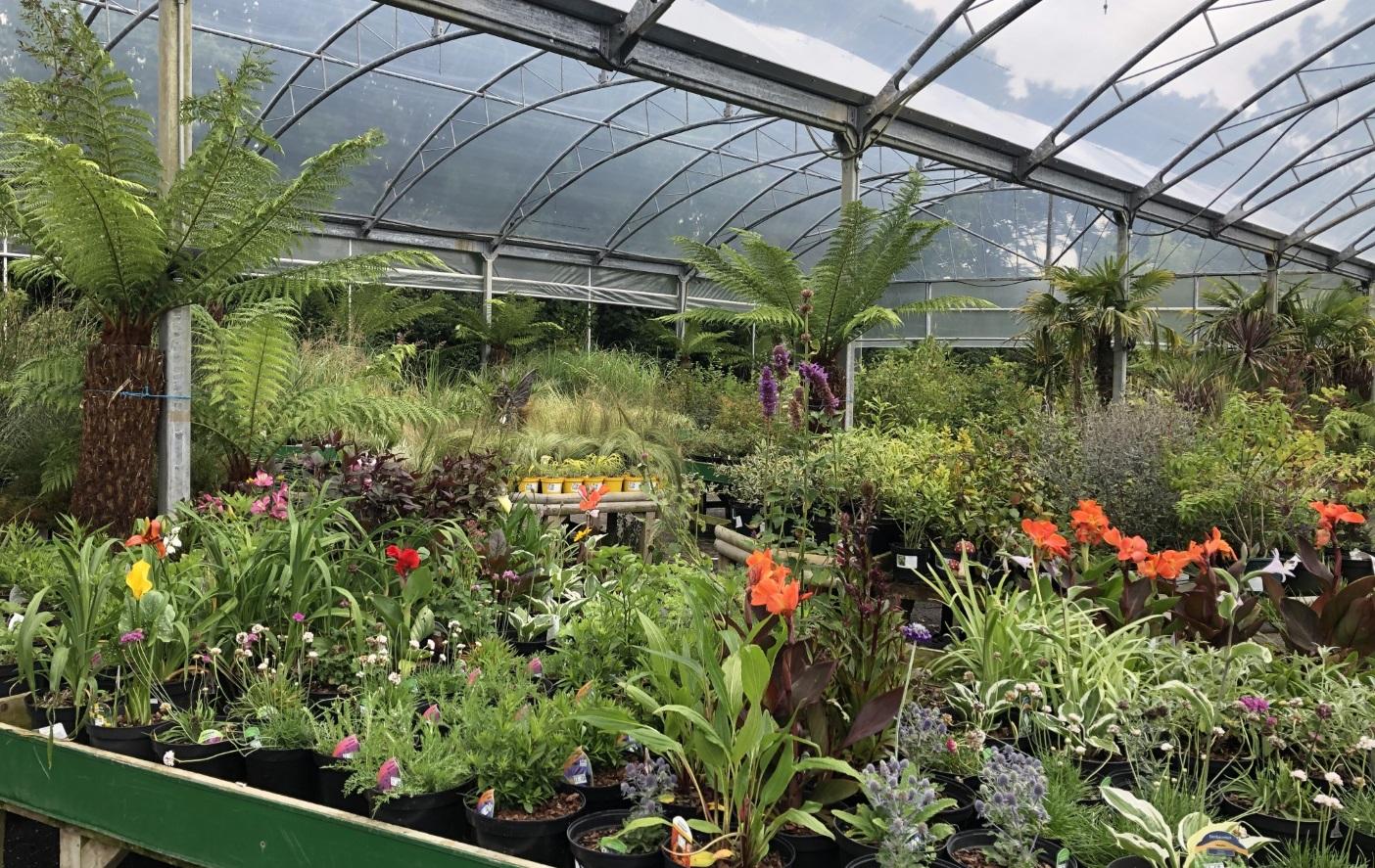 Trevena Cross Undercover Plant Area