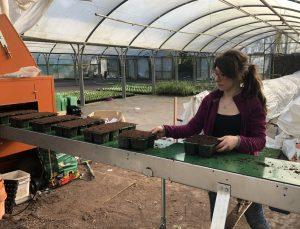 Luz working in nursery