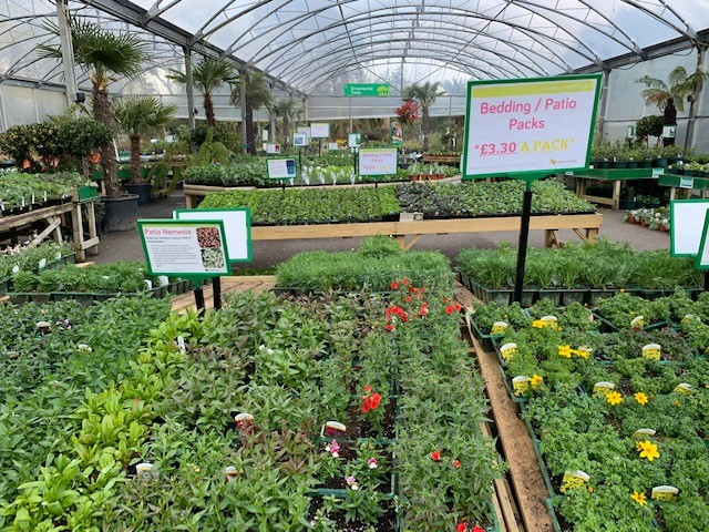 Trevena Cross garden centre bedding 2021